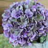 紫陽花のドライフラワーを作ろう!簡単にアレンジできる秘訣とは?