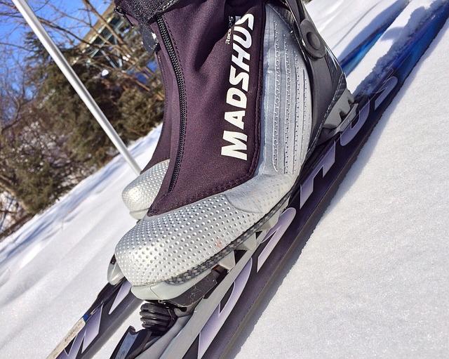 ski-645638_640