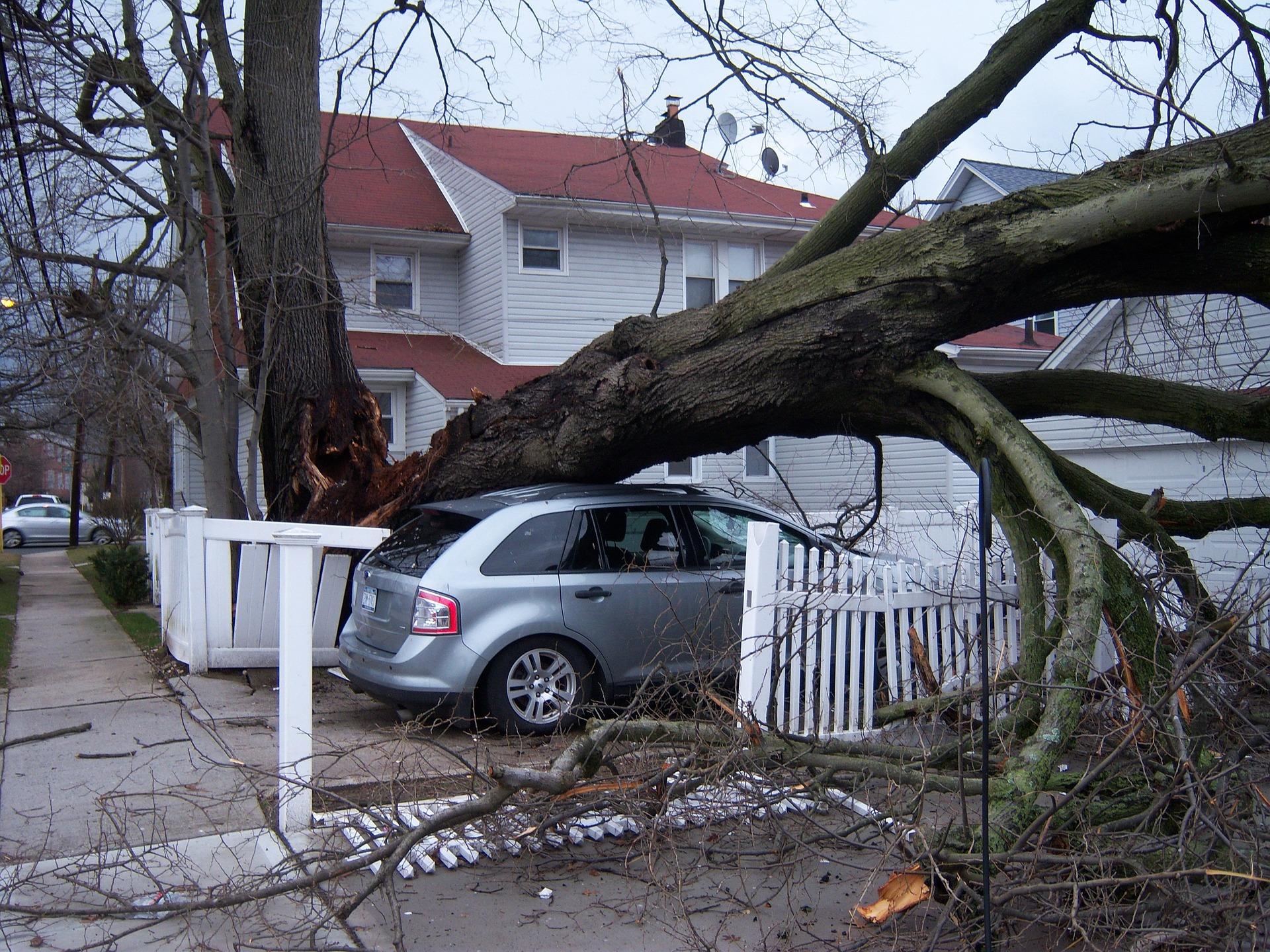 車の台風被害