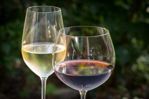 vin blanc2